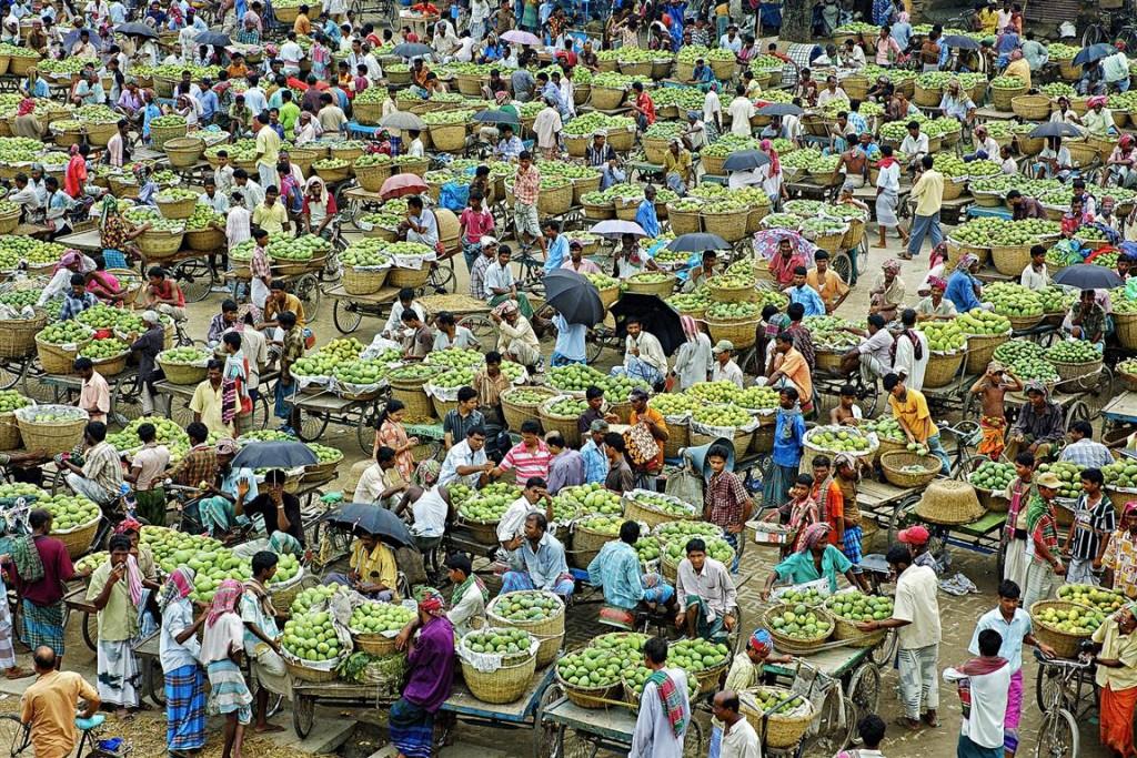 muhammad m - kanshat mango market hc 2
